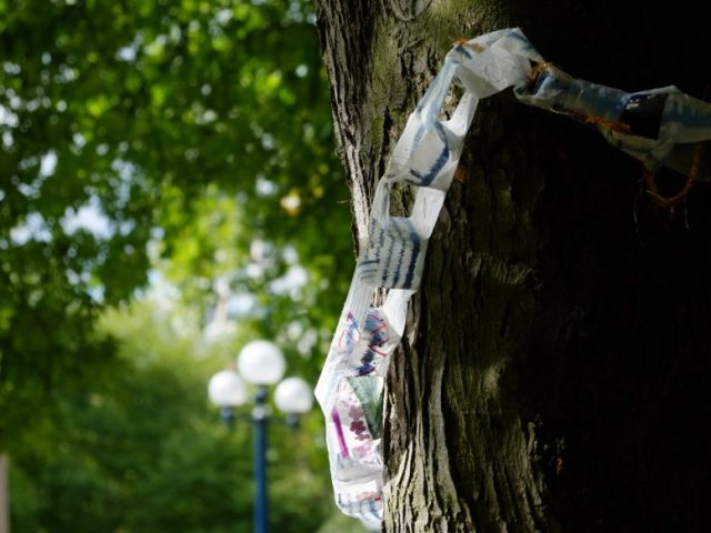 the colorful chain made of fabric strips was hung up at the tree