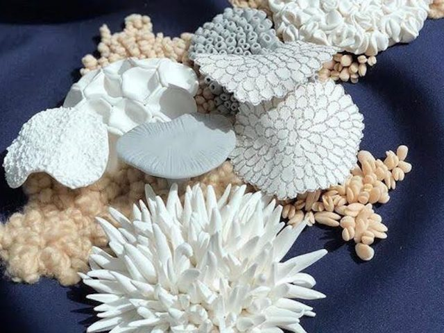 textiles artwork shells